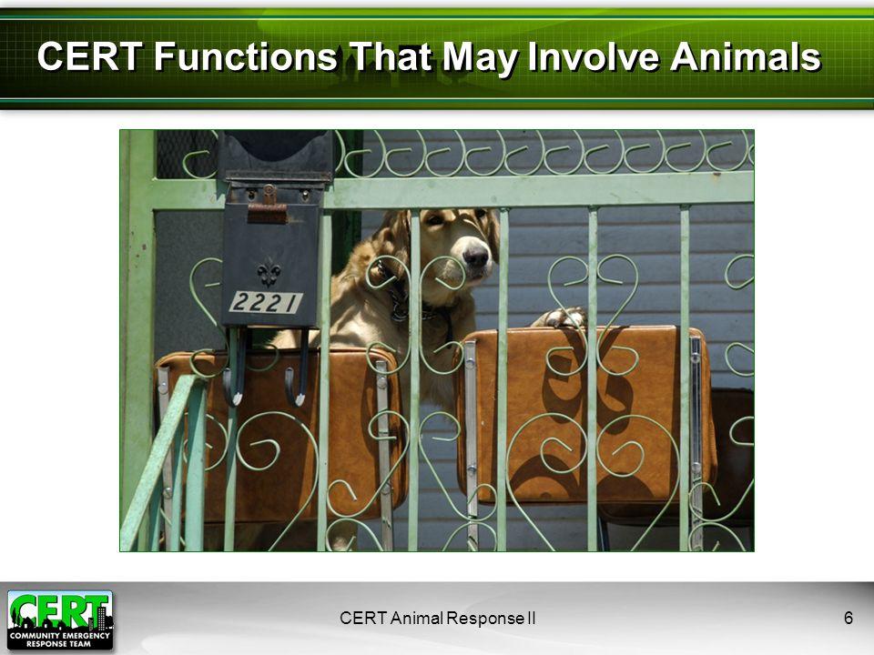 CERT Animal Response II27 Dog Restraints: Muzzles
