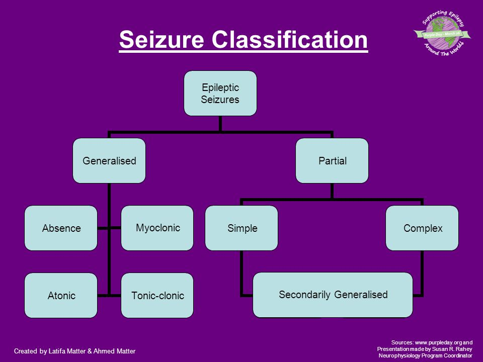 Created by Latifa Matter & Ahmed Matter Sources: www.purpleday.org and Presentation made by Susan R. Rahey Neurophysiology Program Coordinator Seizure