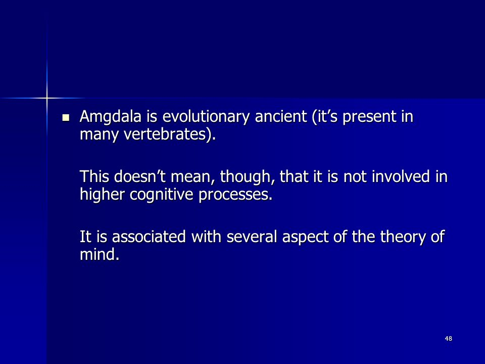 48 Amgdala is evolutionary ancient (it's present in many vertebrates).