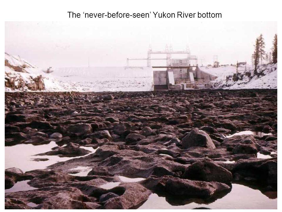 The 'never-before-seen' Yukon River bottom