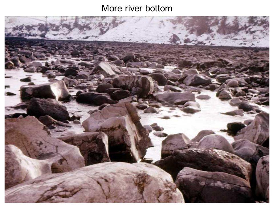 More river bottom