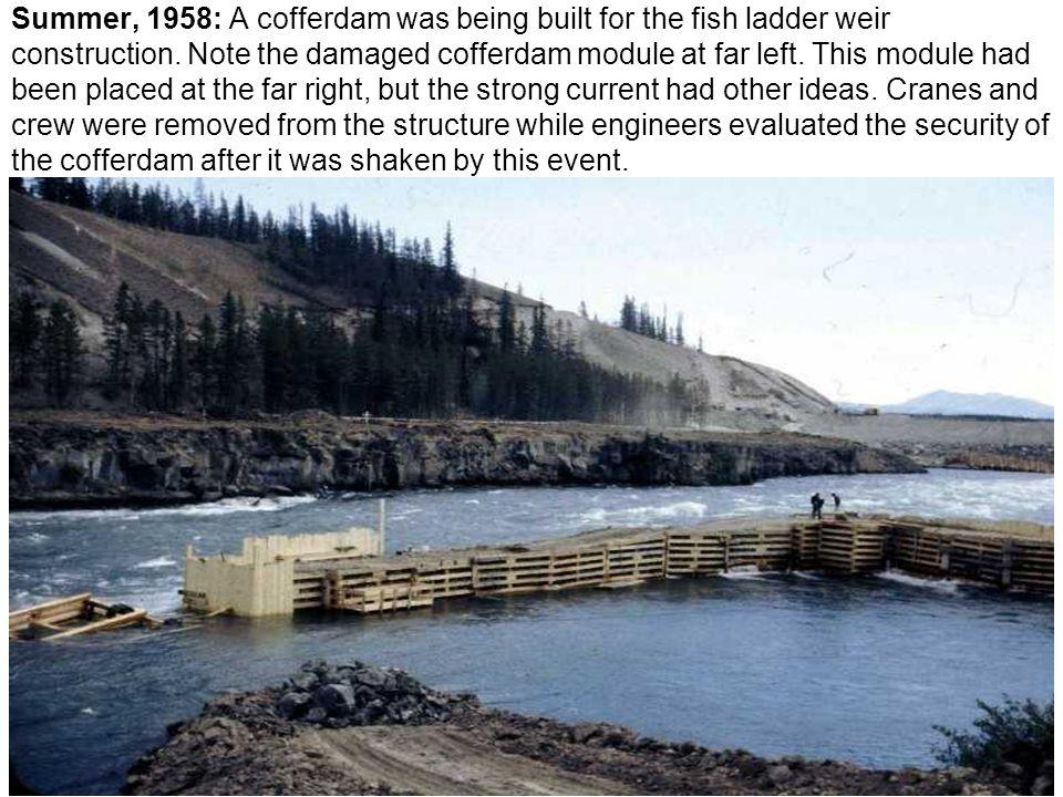 Summer, 1958: A cofferdam was being built for the fish ladder weir construction.