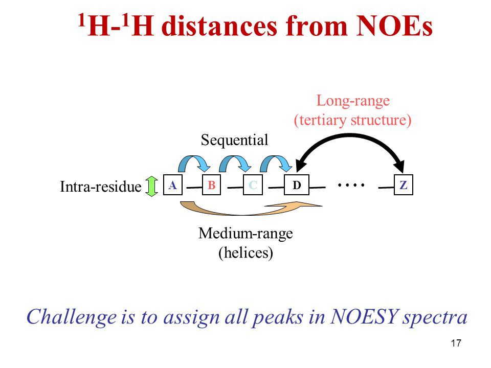 17 1 H- 1 H distances from NOEs ABCDZ Intra-residue Sequential Medium-range (helices) Long-range (tertiary structure) Challenge is to assign all peaks