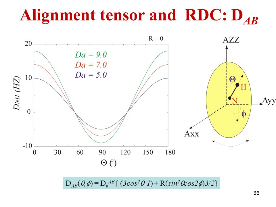 D AB ( ,  ) = D a AB { (3cos 2  -1) + R(sin 2  cos2  )3/2} Alignment tensor and RDC: D AB 36