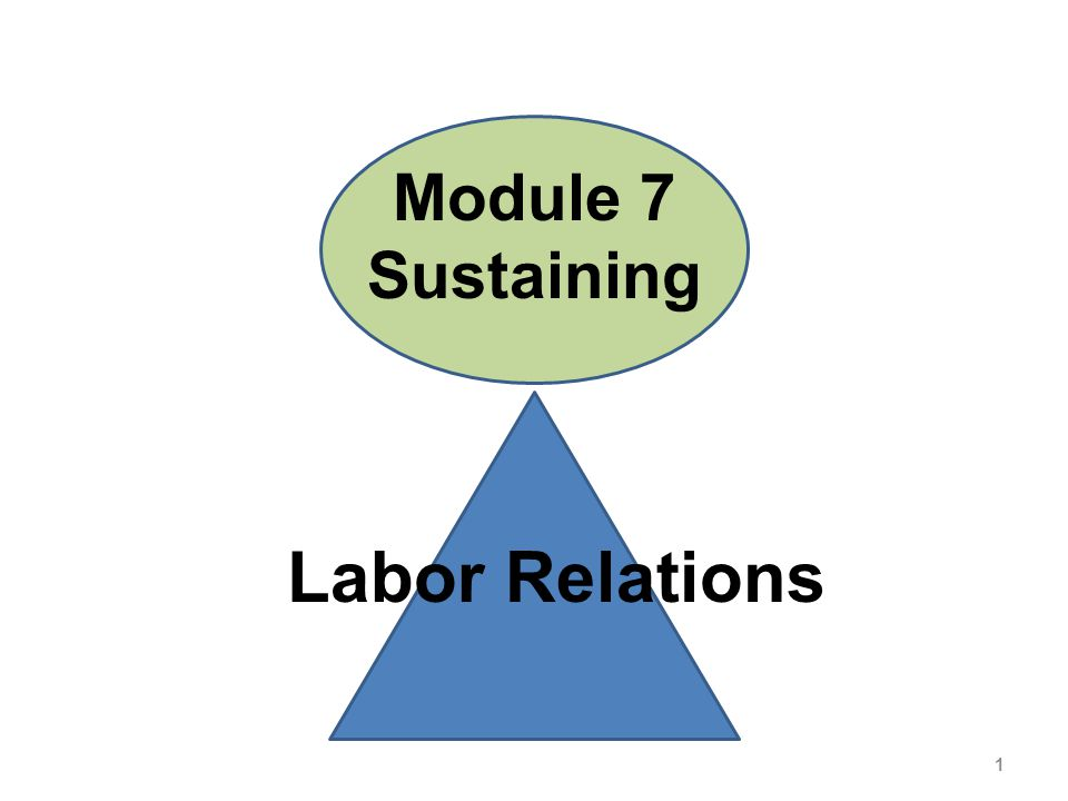 Module 7 Sustaining Labor Relations 1