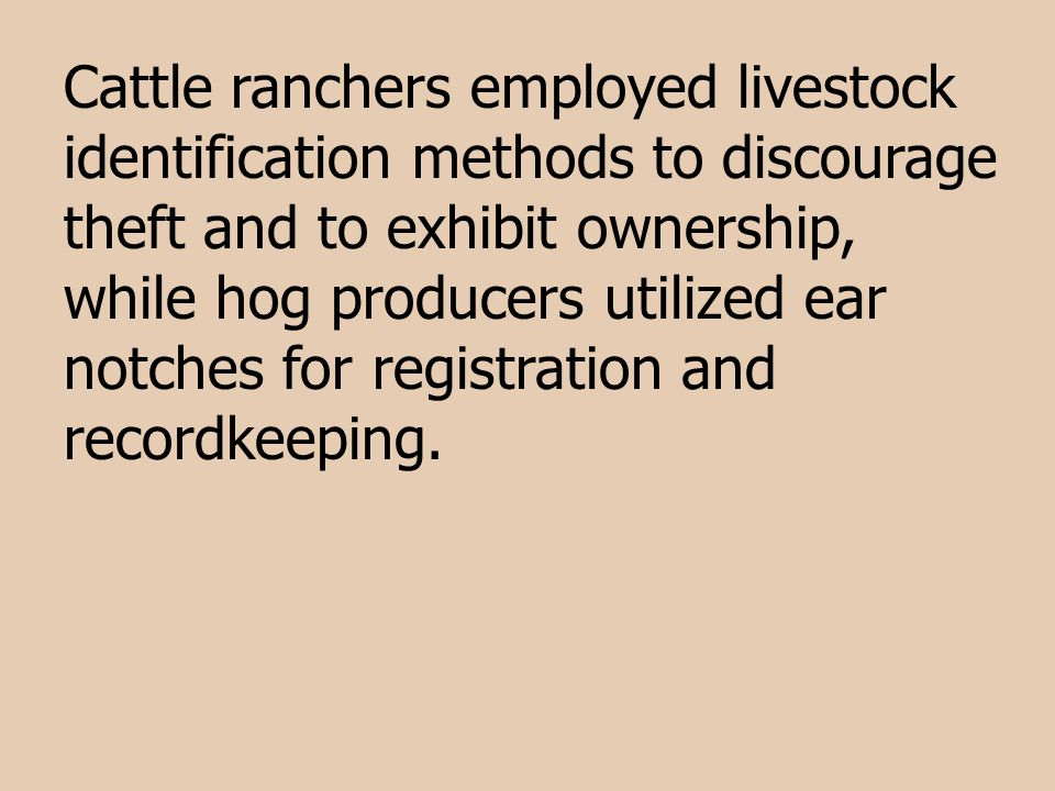 Cattle ranchers employed livestock identification methods to discourage theft and to exhibit ownership, while hog producers utilized ear notches for r