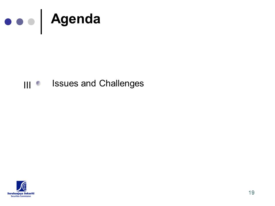 19 Agenda Issues and Challenges III