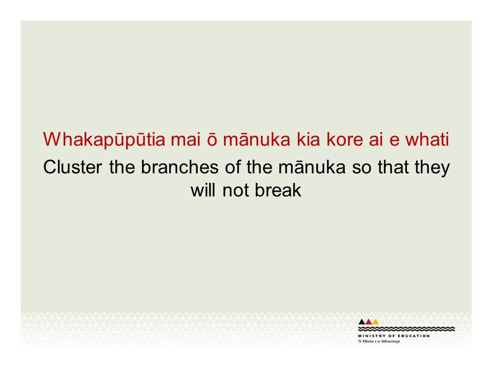 Whakapūpūtia mai ō mānuka kia kore ai e whati Cluster the branches of the mānuka so that they will not break
