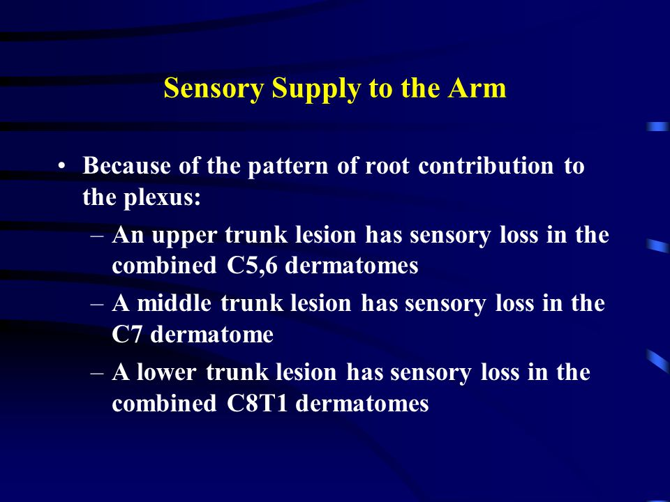 Sensory Supply to the Arm Because of the pattern of root contribution to the plexus: –An upper trunk lesion has sensory loss in the combined C5,6 dermatomes –A middle trunk lesion has sensory loss in the C7 dermatome –A lower trunk lesion has sensory loss in the combined C8T1 dermatomes