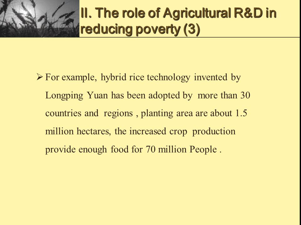 Ⅱ. The role of Agricultural R&D in reducing poverty (3)  For example, hybrid rice technology invented by Longping Yuan has been adopted by more than