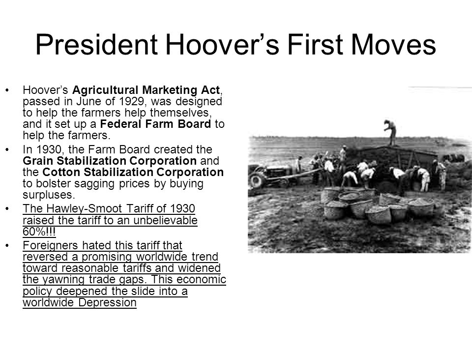President Hoover's First Moves Hoover's Agricultural Marketing Act, passed in June of 1929, was designed to help the farmers help themselves, and it set up a Federal Farm Board to help the farmers.