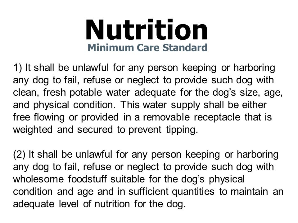 Nutrition Minimum Care Standard 1) It shall be unlawful for any person keeping or harboring any dog to fail, refuse or neglect to provide such dog with clean, fresh potable water adequate for the dog's size, age, and physical condition.