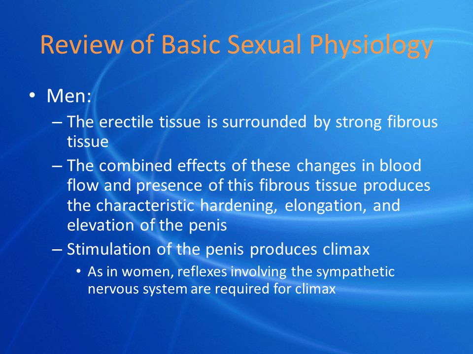 Review of Basic Sexual Physiology Men: – The erectile tissue is surrounded by strong fibrous tissue – The combined effects of these changes in blood flow and presence of this fibrous tissue produces the characteristic hardening, elongation, and elevation of the penis – Stimulation of the penis produces climax As in women, reflexes involving the sympathetic nervous system are required for climax