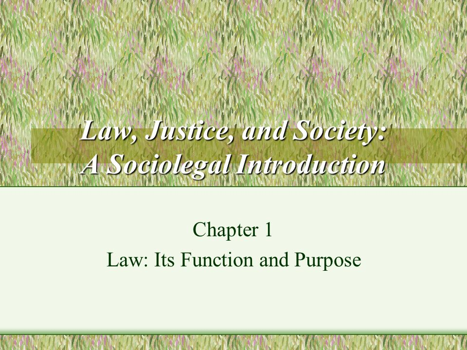 Law, Justice, and Society: A Sociolegal Introduction Chapter 1 Law: Its Function and Purpose