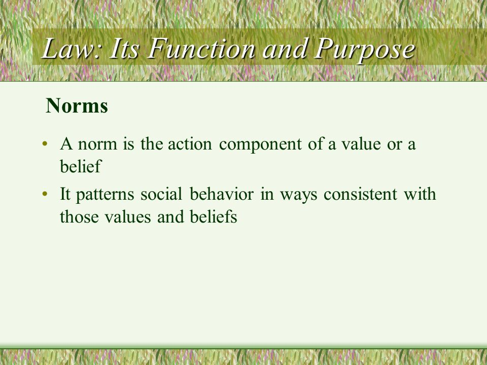 Law: Its Function and Purpose A norm is the action component of a value or a belief It patterns social behavior in ways consistent with those values a