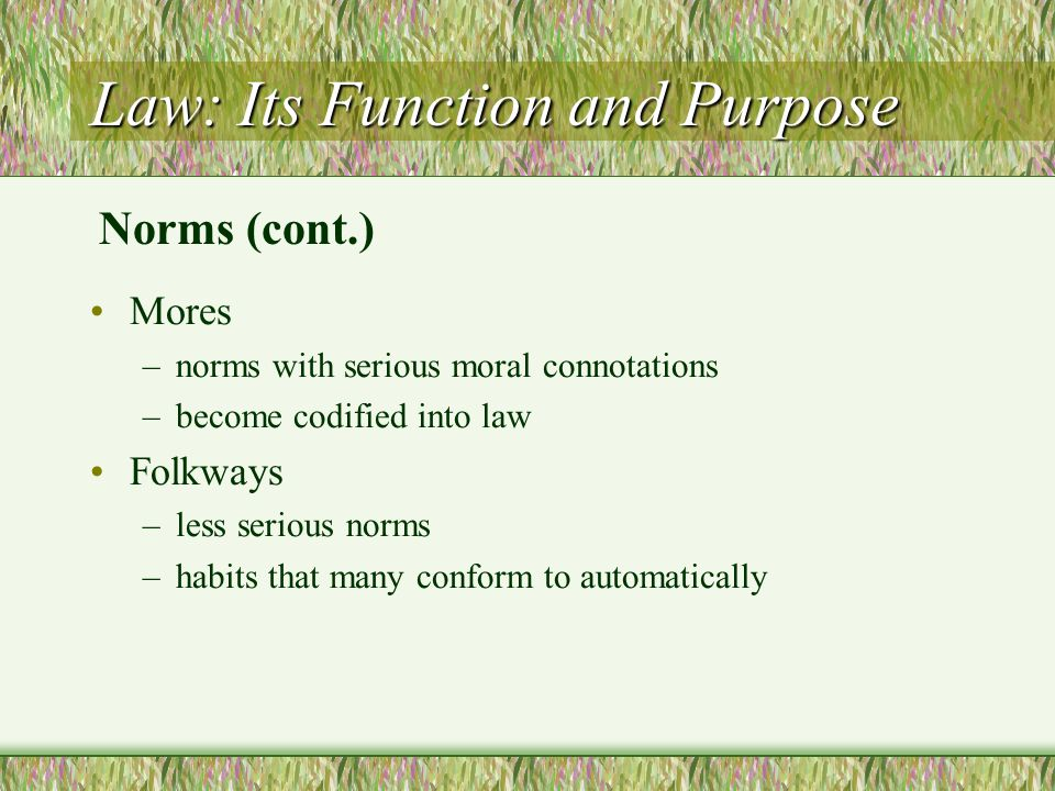 Law: Its Function and Purpose Mores –norms with serious moral connotations –become codified into law Folkways –less serious norms –habits that many co
