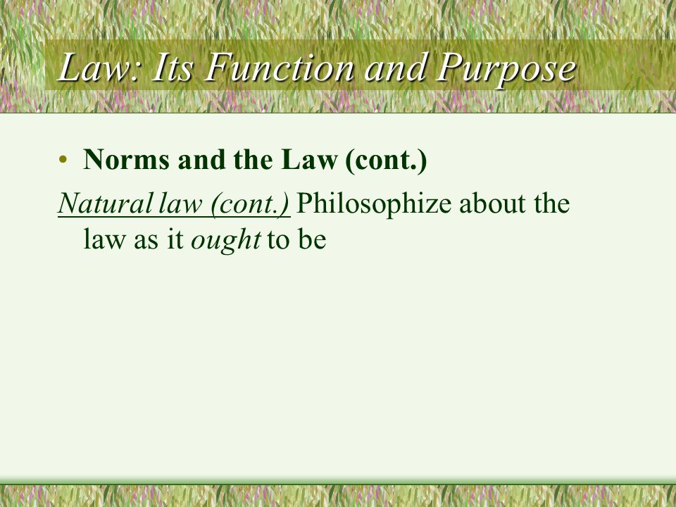 Law: Its Function and Purpose Norms and the Law (cont.) Natural law (cont.) Philosophize about the law as it ought to be