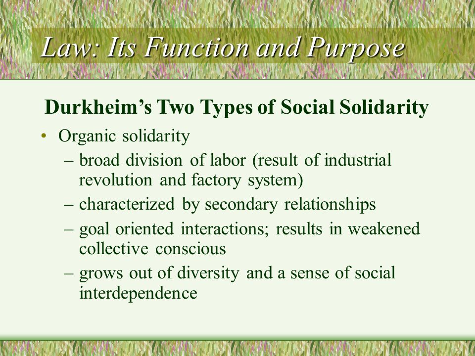 Law: Its Function and Purpose Organic solidarity –broad division of labor (result of industrial revolution and factory system) –characterized by secon
