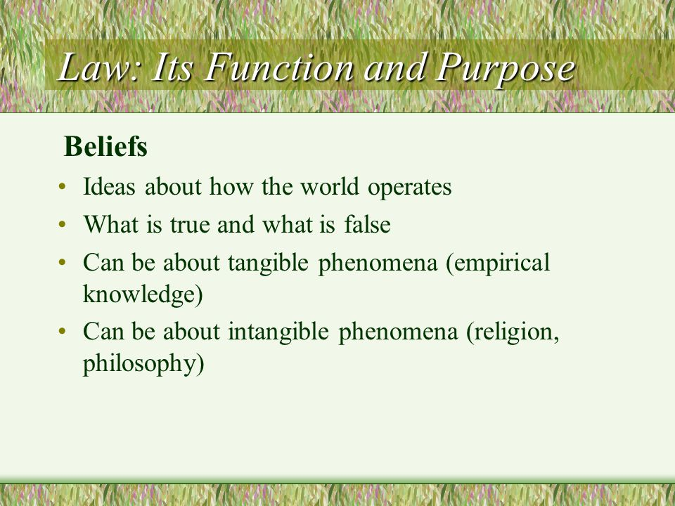 Law: Its Function and Purpose Ideas about how the world operates What is true and what is false Can be about tangible phenomena (empirical knowledge)