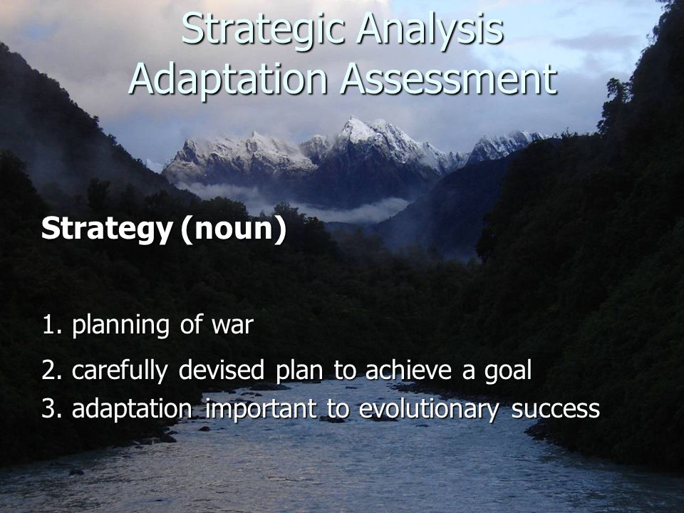 Strategic Analysis Adaptation Assessment Strategy (noun) 1.