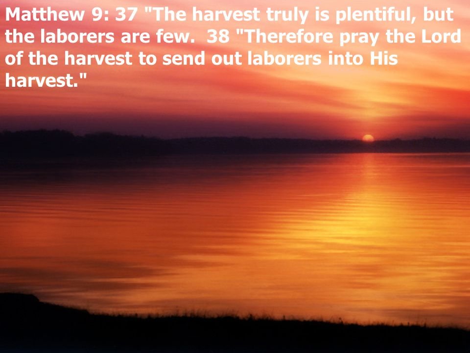 Matthew 9: 37 The harvest truly is plentiful, but the laborers are few.