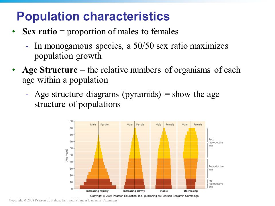 Copyright © 2008 Pearson Education, Inc., publishing as Benjamin Cummings Sex ratio = proportion of males to females -In monogamous species, a 50/50 sex ratio maximizes population growth Age Structure = the relative numbers of organisms of each age within a population -Age structure diagrams (pyramids) = show the age structure of populations Population characteristics