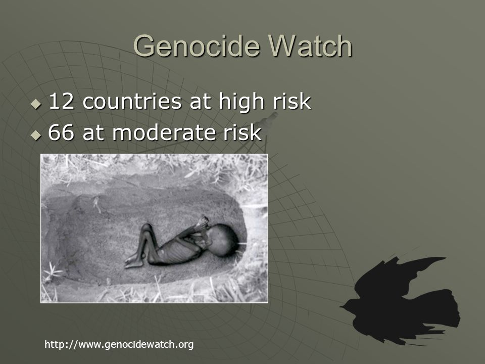 Genocide Watch  12 countries at high risk  66 at moderate risk http://www.genocidewatch.org