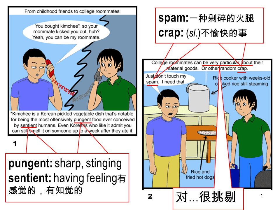 1 1 2 pungent: sharp, stinging sentient: having feeling 有 感觉的,有知觉的 spam: 一种剁碎的火腿 crap: ( sl.) 不愉快的事 对 … 很挑剔