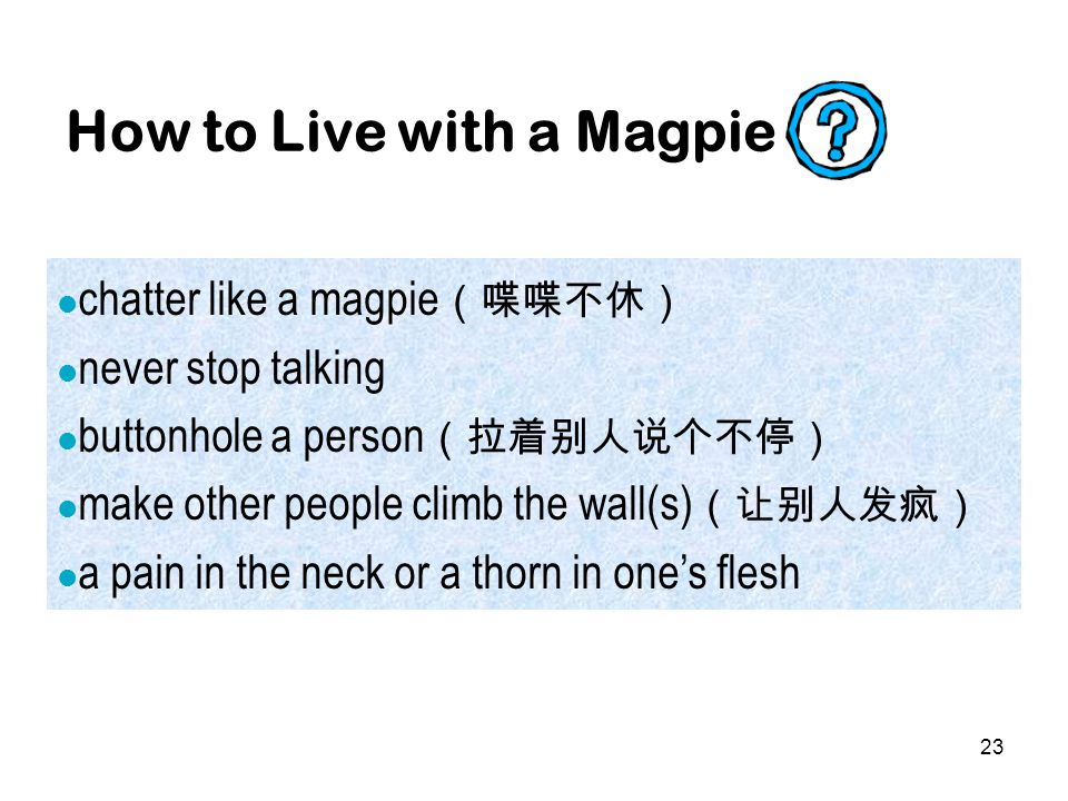 23 How to Live with a Magpie chatter like a magpie (喋喋不休) never stop talking buttonhole a person (拉着别人说个不停) make other people climb the wall(s) (让别人发疯) a pain in the neck or a thorn in one's flesh