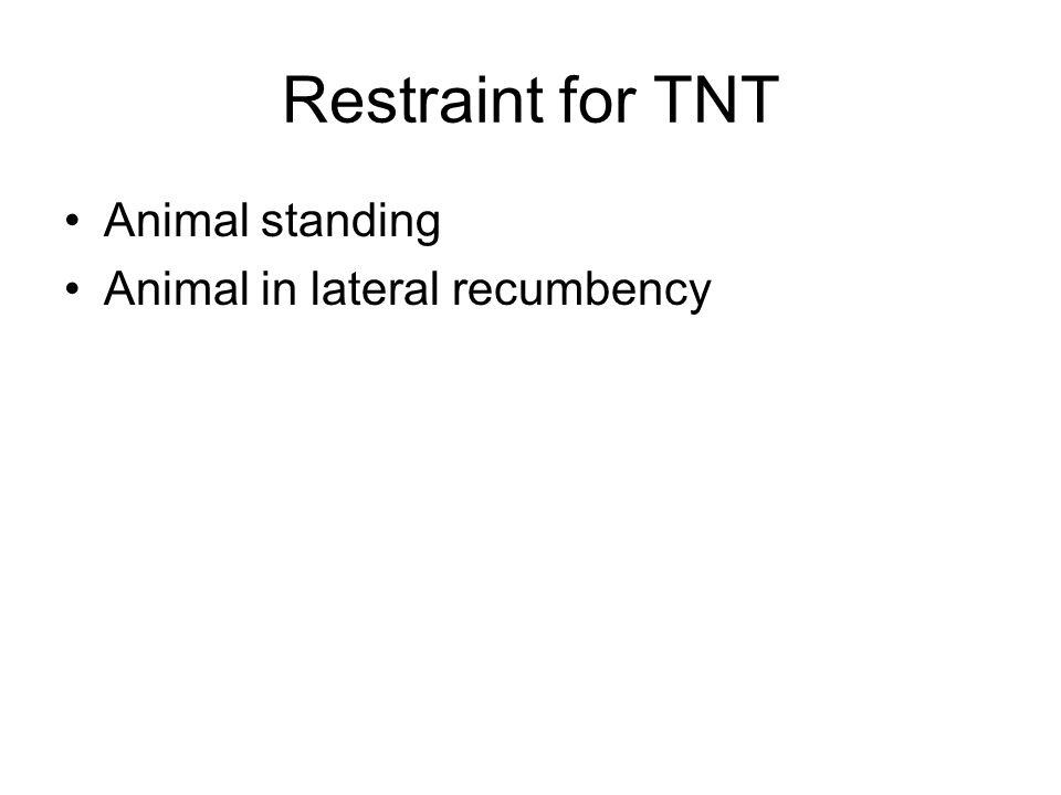 Restraint for TNT Animal standing Animal in lateral recumbency