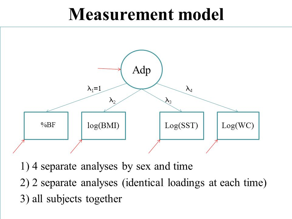 Measurement model 1) 4 separate analyses by sex and time 2) 2 separate analyses (identical loadings at each time) 3) all subjects together Adp %BF log(BMI)Log(SST)Log(WC)    