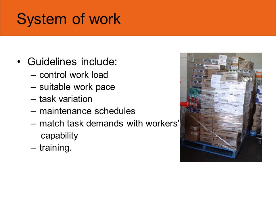 System of work Guidelines include: –control work load –suitable work pace –task variation –maintenance schedules –match task demands with workers' cap