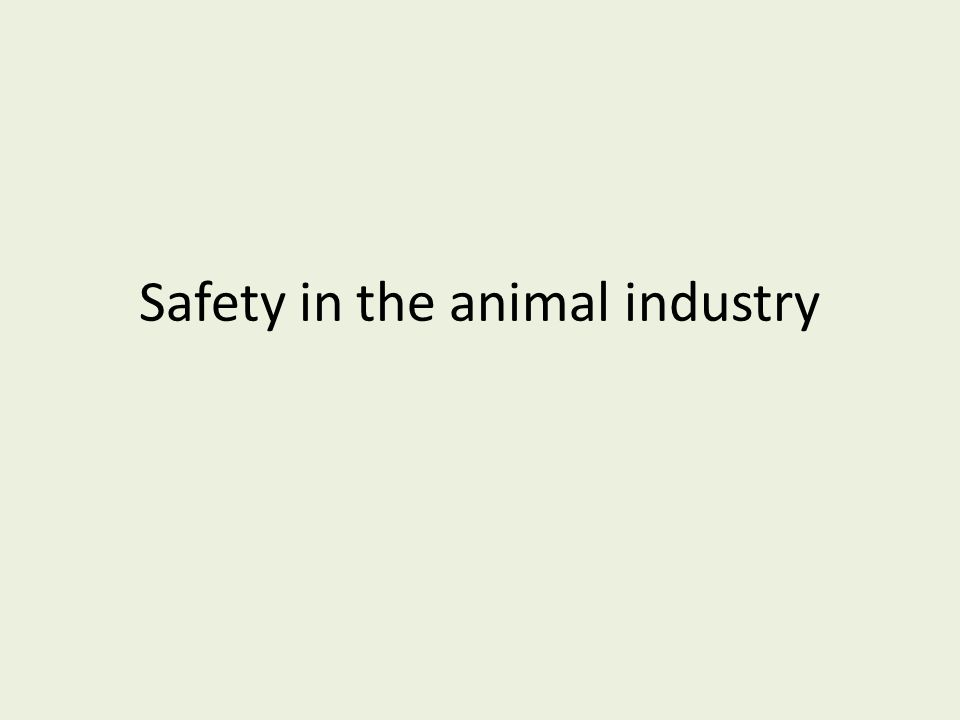 Safety in the animal industry
