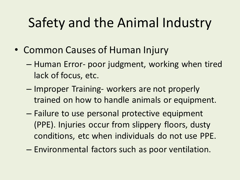 Safety and the Animal Industry Common Causes of Human Injury – Human Error- poor judgment, working when tired lack of focus, etc. – Improper Training-