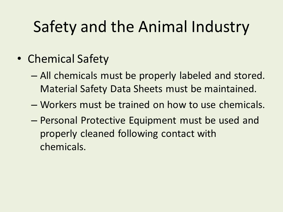 Safety and the Animal Industry Chemical Safety – All chemicals must be properly labeled and stored. Material Safety Data Sheets must be maintained. –