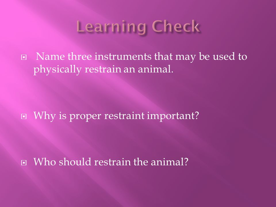  Name three instruments that may be used to physically restrain an animal.  Why is proper restraint important?  Who should restrain the animal?