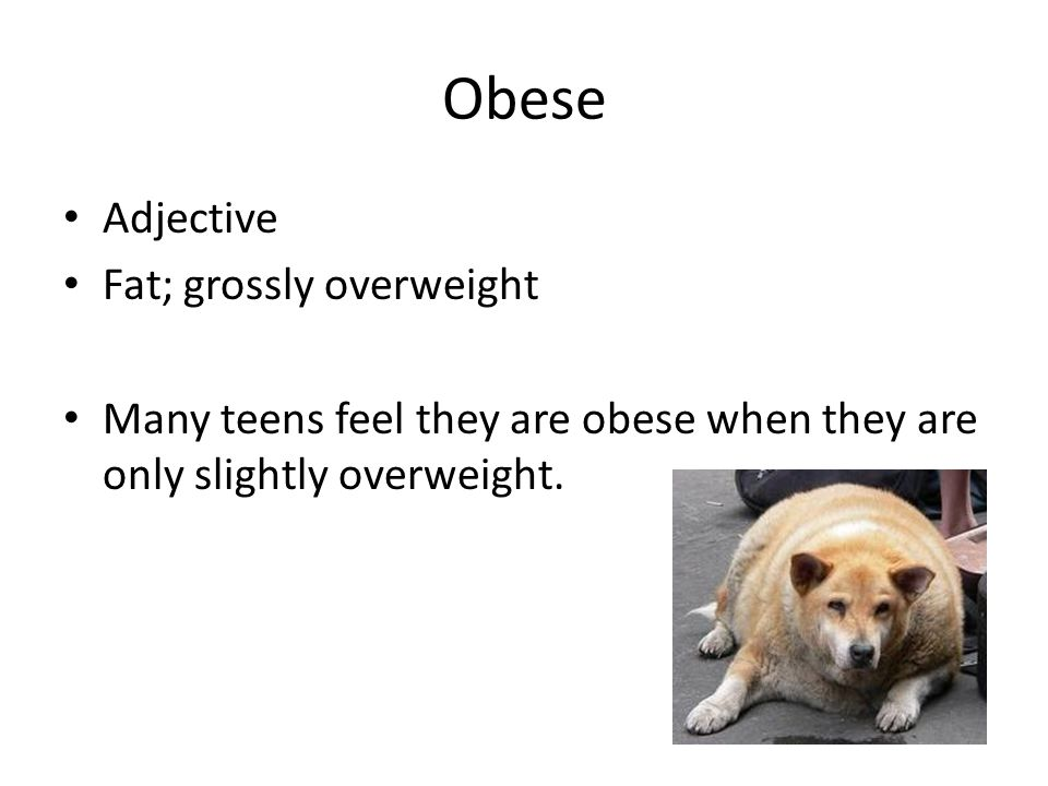 Obese Adjective Fat; grossly overweight Many teens feel they are obese when they are only slightly overweight.