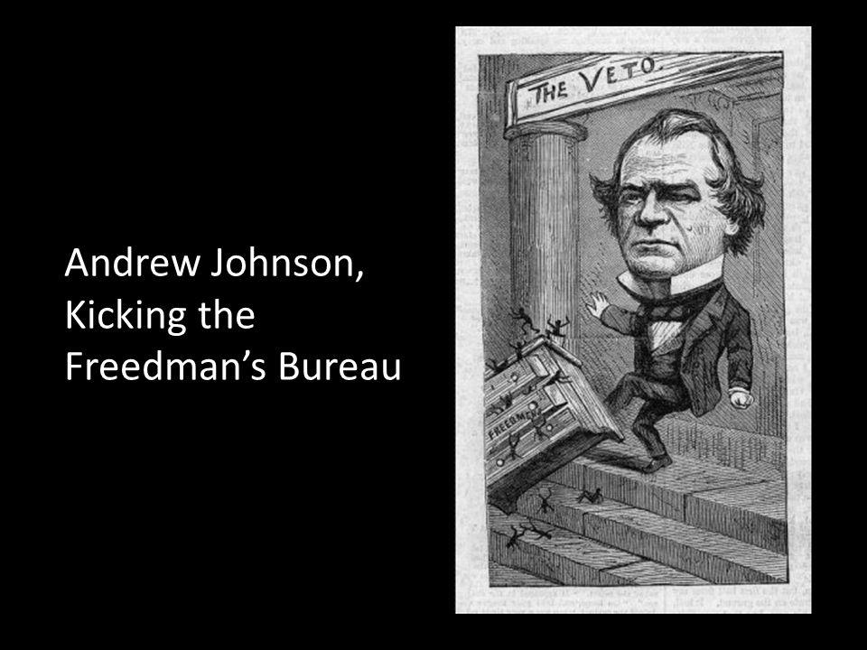 Andrew Johnson, Kicking the Freedman's Bureau