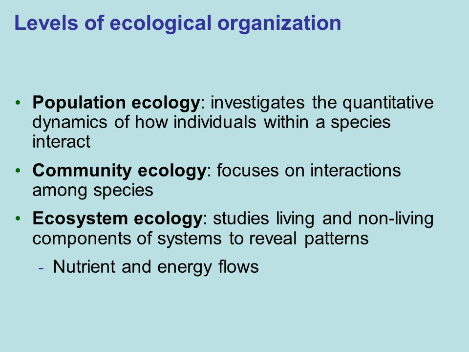 Levels of ecological organization Population ecology: investigates the quantitative dynamics of how individuals within a species interact Community ecology: focuses on interactions among species Ecosystem ecology: studies living and non-living components of systems to reveal patterns - Nutrient and energy flows