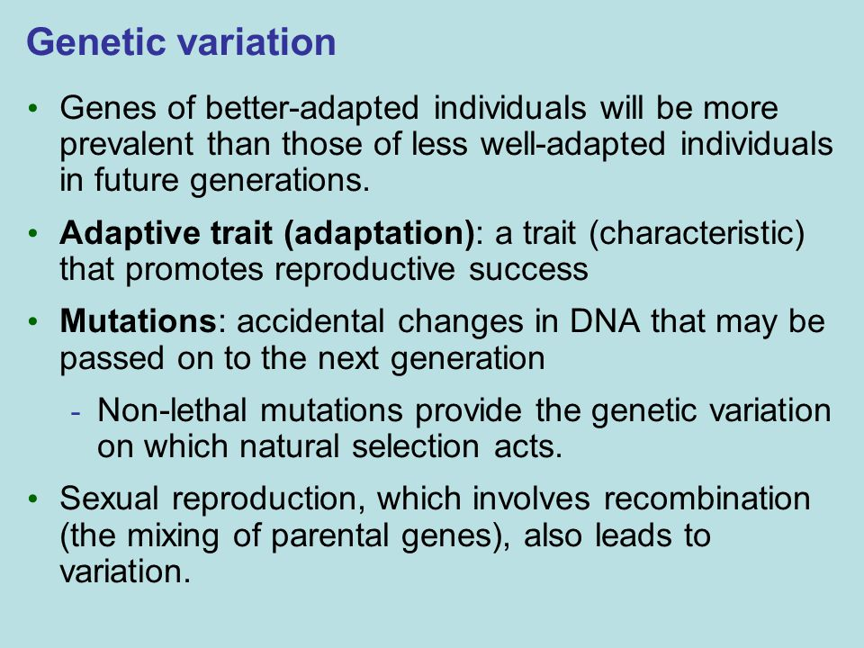 Genetic variation Genes of better-adapted individuals will be more prevalent than those of less well-adapted individuals in future generations. Adapti
