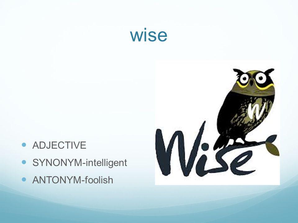 wise ADJECTIVE SYNONYM-intelligent ANTONYM-foolish