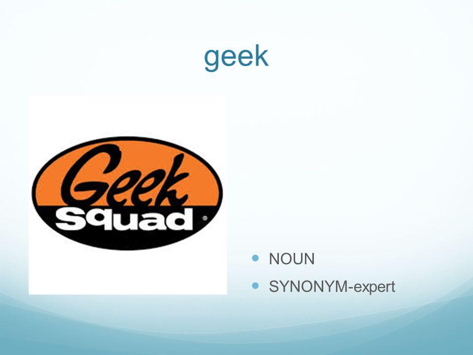 geek NOUN SYNONYM-expert