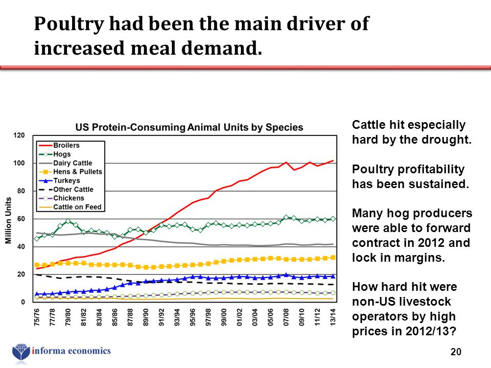 Poultry had been the main driver of increased meal demand. 20 Cattle hit especially hard by the drought. Poultry profitability has been sustained. Man