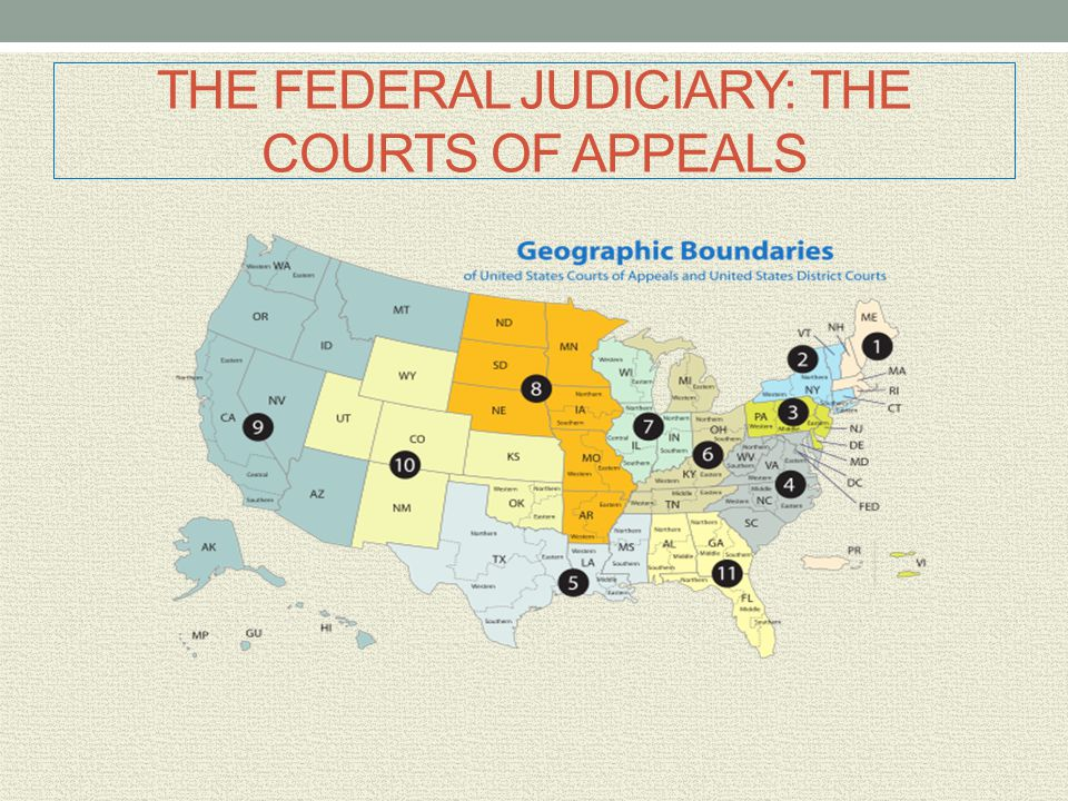 THE FEDERAL JUDICIARY: THE COURTS OF APPEALS