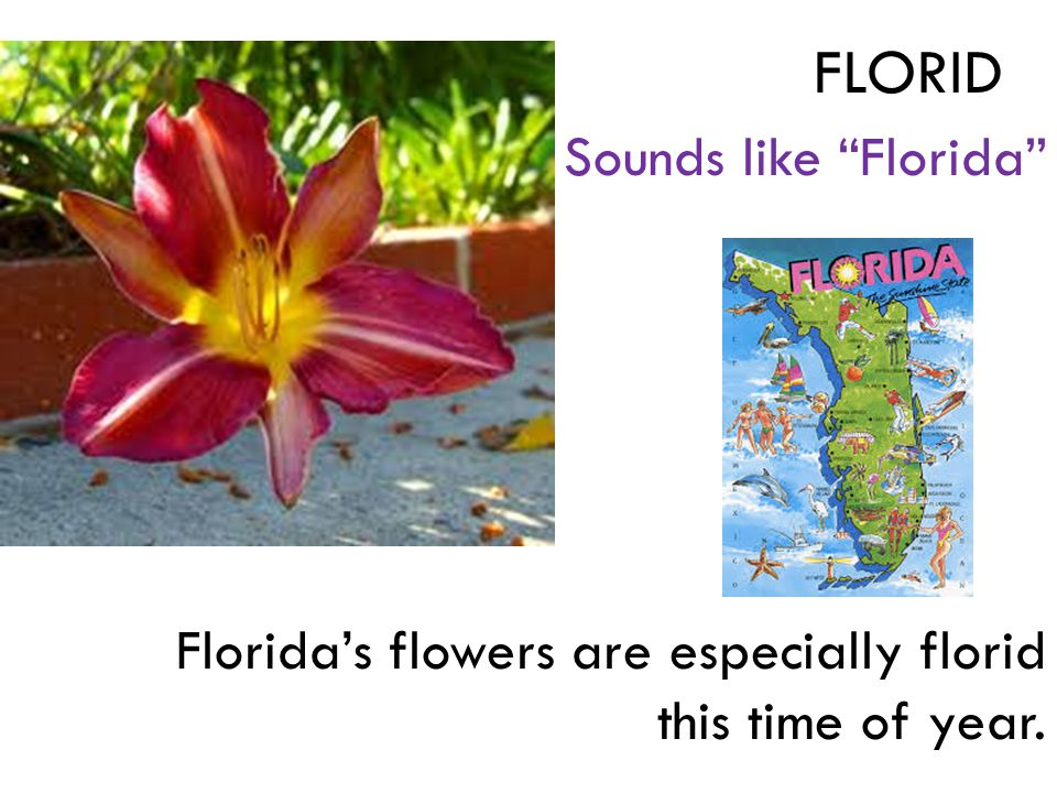 Sounds like Florida Florida's flowers are especially florid this time of year. FLORID