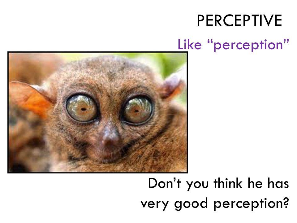 "Like ""perception"" Don't you think he has very good perception? PERCEPTIVE"