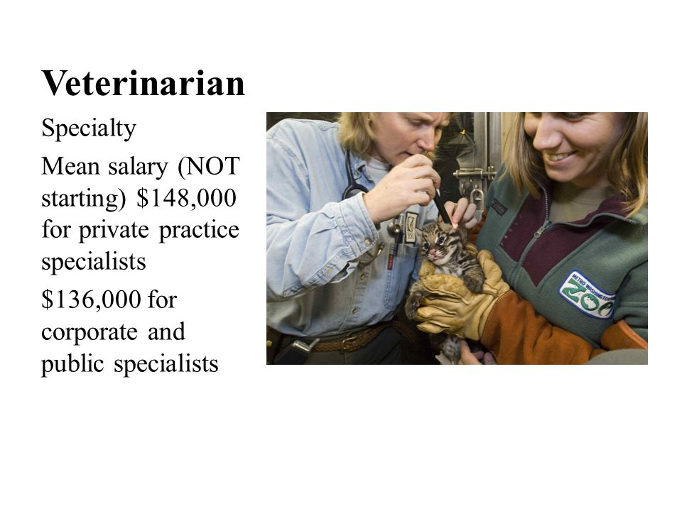 Veterinarian Specialty Mean salary (NOT starting) $148,000 for private practice specialists $136,000 for corporate and public specialists