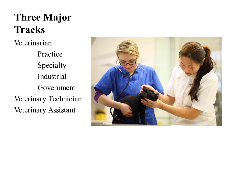 Three Major Tracks Veterinarian Practice Specialty Industrial Government Veterinary Technician Veterinary Assistant