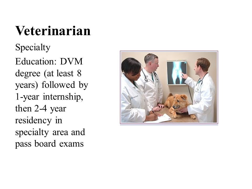 Veterinarian Specialty Education cost: Internship usually unpaid, residents typically paid almost enough to cover living expenses.