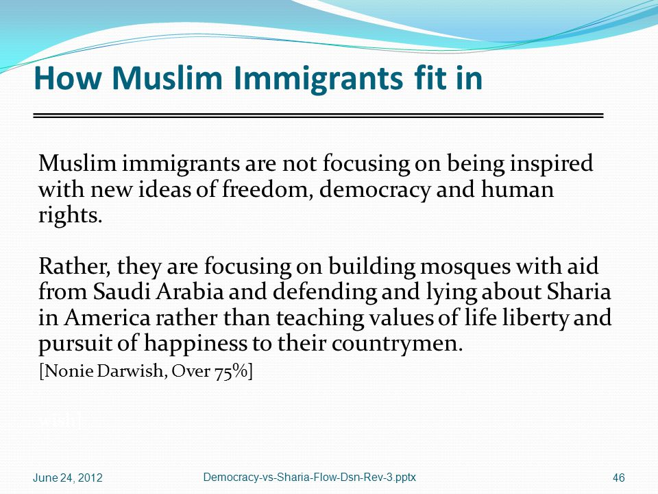 How Muslim Immigrants fit in Muslim immigrants are not focusing on being inspired with new ideas of freedom, democracy and human rights. Rather, they